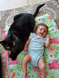 baby and cat-2