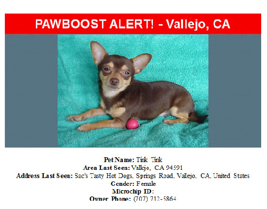 lost-dog-tink-tink-09-23-16 Flyer
