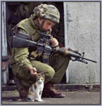 soldier and cat